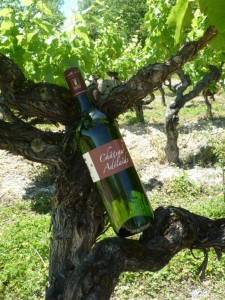 Vin Gaillac Doux - vin Gaillac - meilleur prix - vente vin gaillac