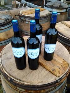 La Cuvée de l'oubli 2006 est un vin de voile réalisé à partir de nos plus vieilles parcelles de Mauzac.